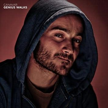 Genius Walks
