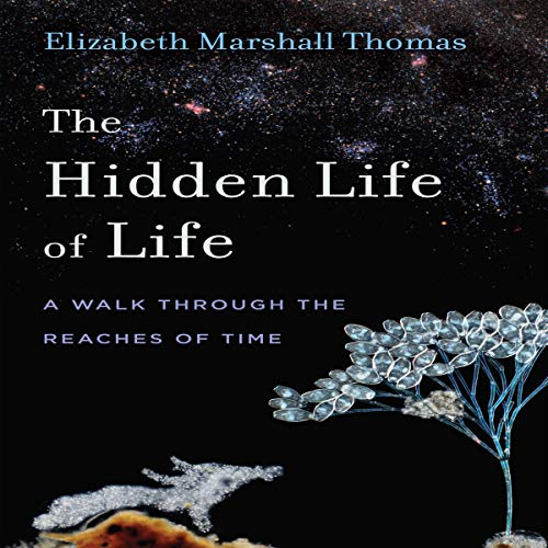 The Hidden Life of Life: A Walk through the Reaches of Time