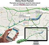 IMG-2 localizzatore gps per auto tracker