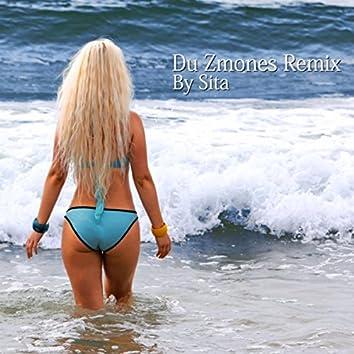 Du Zmones (Remix)