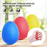 Peradix Hand Exercise Stress Relief Balls, Hand Grip Strengthener balls Finger Therapy Squeeze Training for...