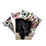 Perro Negro Animal Solitario Noche Poker Jugando Tarjeta Mágica Divertida Juego De Mesa
