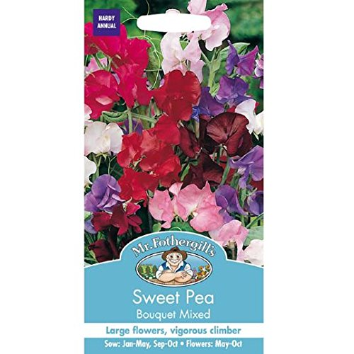 Graines M. Fothergills Sweet Pea Bouquet mixte