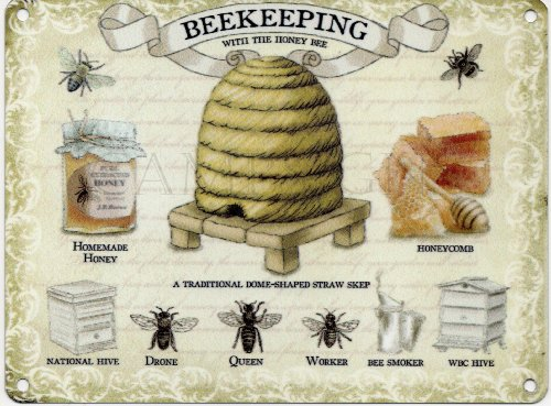 Original Metal Signs - Grande Plaque en métal avec Illustration d'apiculture - 40 cm x 30 cm