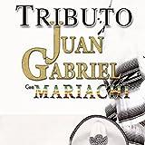Tributo Juan Gabriel Con Mariachi