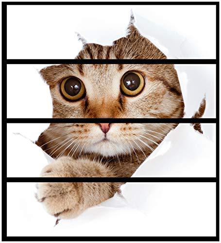 Wallario Möbelfolie/Aufkleber, geeignet für IKEA Malm Kommode - Katze mit Blick nach vorn mit 4 Schubfächern