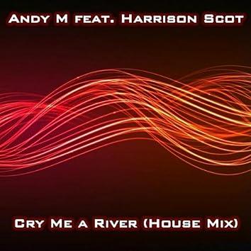 Cry Me A River ( house mix ) [feat. Harrison Scott]