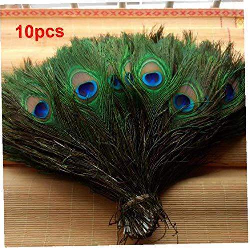 AMOYER 10 Pcs Plume De Paon Naturel Yeux Écran Vert Bricolage Craft Vacances Mariage Décorations