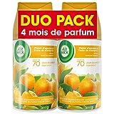 Air Wick - Set di 2 ricariche per diffusore FreshMatic, fragranza Plaisir d'agrumes et zeste de mandarine