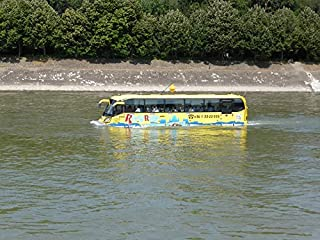 budapest water bus