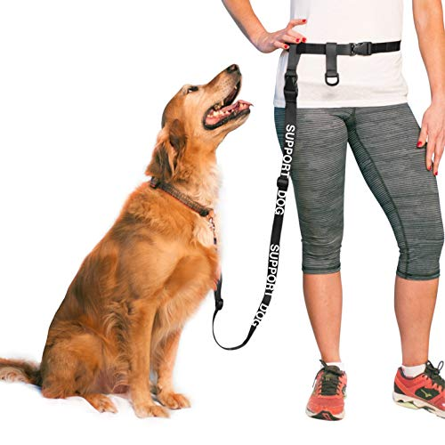"The Buddy System Adjustable Hands Free Dog Leash, Great , Jogging and Training Service Dog Regular Belt (22""- 40"" Waist), Support Dog- Black"