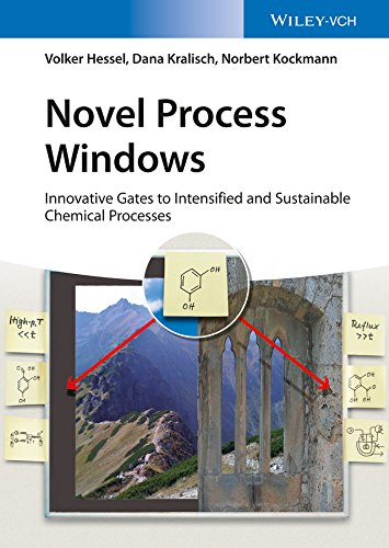 Novel Process Windows: Innovative Gates to Intensified and Sustainable Chemical Processes (English Edition)