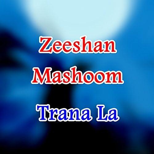 Zeeshan Mashoom