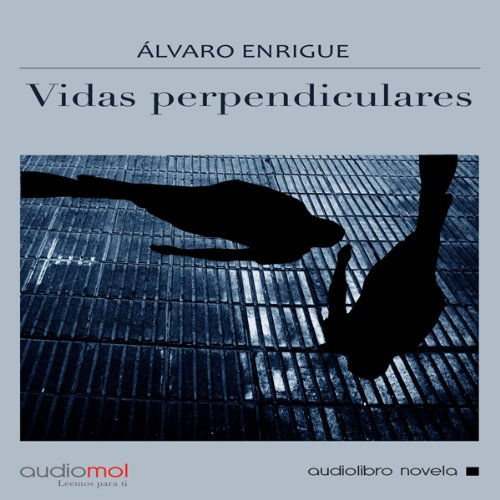 Vidas perpendiculares [Perpendicular Lives] audiobook cover art