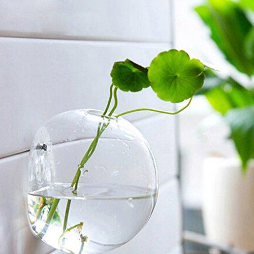 Baoblaze Vase Suspendu en Verre Transparent Boule pour Plantes Fleurs Accessoire Cadeau Décoration de Jardin Pelouse Maison