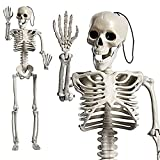 CPHBO 24 Inches Halloween Skeleton Full Body Posable Movable Jonints for Halloween Decoration Decor