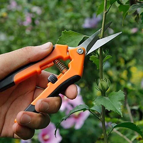 Tijeras de podar de jardín Rectas multifuncionales Cuyo diámetro de Corte árboles frutales Flores Ramas y Tijeras Herramientas de Tijeras de Rama - X3, Naranja
