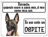 malinois pastore belga ricorda il mio cane vive qui tu sei solo un ospite targa metallo frase cane (15x20)