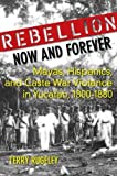 Rebellion Now and Forever: Mayas, Hispanics, and Caste War Violence in Yucatan, 1800–1880 (English Edition)