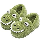 JACKSHIBO Girls Boys Home Slippers Warm Dinosaur House Slippers for Toddler Fur Lined Winter Indoor Shoes Green 7-8 Toddler