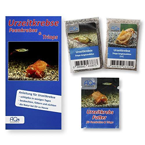 AQ4Aquaristik Triops longicaudatus 2er-Set - naturfarben und rot (2 Zuchtansätze, mit Urzeitkrebs-Eiern), Starter-Set mit Futter und Anleitung