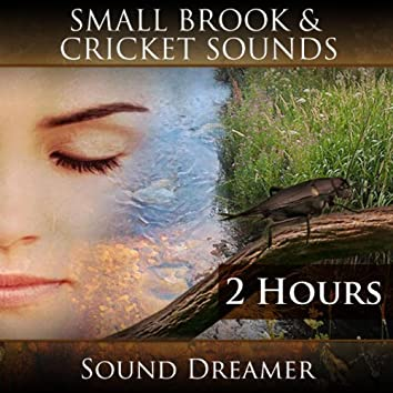 Small Brook and Cricket Sounds (2 Hours)