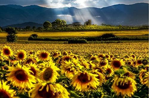 Yqgdss Blooming Sunflowers Juego De Rompecabezas De 1500 Piezas para Adultos Cada Pieza Es Una Tecnología Única con Una Caja De Regalo