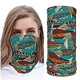 Jack16 Alaskan Salmon Teal Ice Silk Face M_ask - Funda para cuello y máscara, cubrebocas, pasamontañas transpirable para correr y montar a caballo