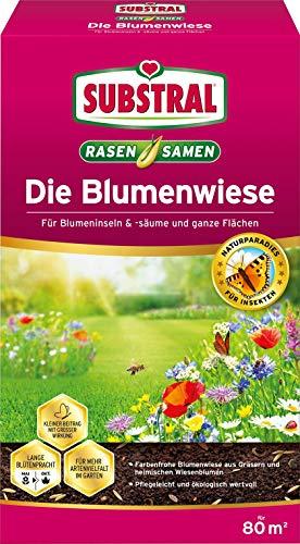 Substral Die Blumenwiese Rasen- & Blumensamen für ein attraktives Bienen- und Nützlingsparadies, 800 g