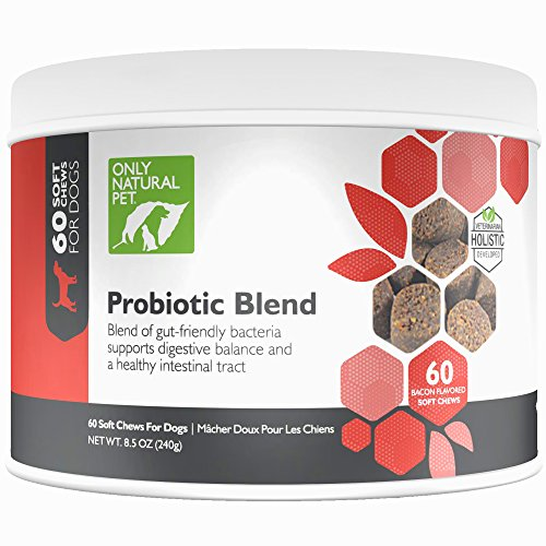 Only Natural Pet Probiotic Dog & Cat Supplement - Digestive Intestinal Tract Health Enzyme Formula - 60 Soft Chews