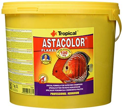 Tropical Astacolor Farbförderndes Flockenfutter, 1er Pack (1 x 5 l)