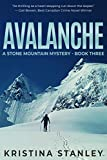 Avalanche (A Stone Mountain Mystery Book 3) (English Edition)