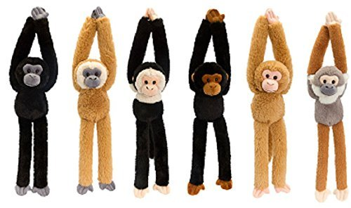 Keel 50cm Hanging Monkeys 6 Assorted ONE SUPPLIED AT RANDOM UNLESS SPECIFIED by Keel