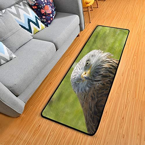 SENNSEE Predator Falcon Tapis de cuisine antidérapant pour la maison, le couloir, l'entrée de la chambre, 182,9 x 61 cm