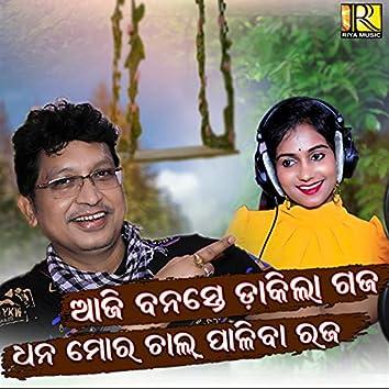 Dhana Mora Chal Paliba Raja