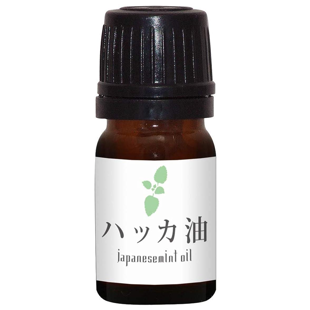 マカダムシンボル予防接種ガレージゼロ ハッカ油 (5ml)