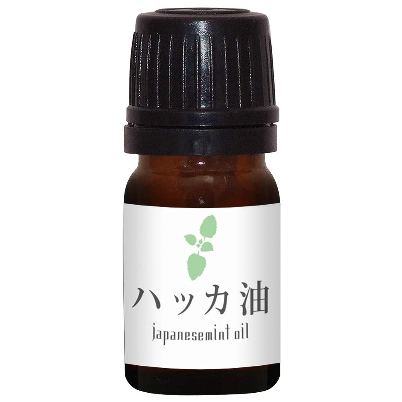 意気揚々または商品ガレージゼロ ハッカ油 (5ml)