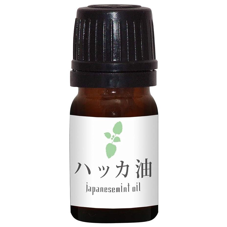 形式航空殺人ガレージゼロ ハッカ油 (5ml)