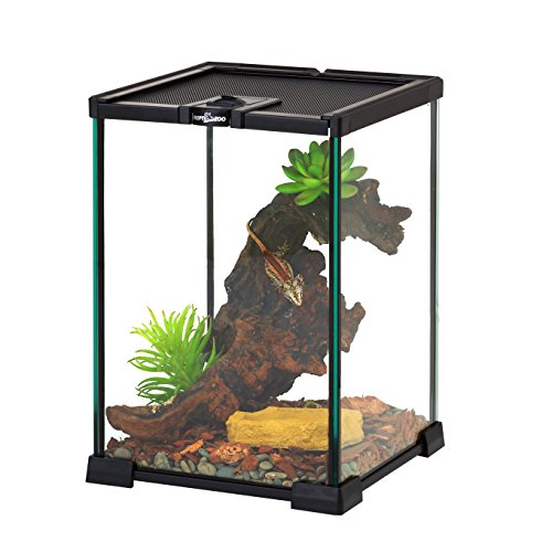 REPTIZOO Mini Reptile Glass Terrarium Tank 8' x 8' x 12' Full View Visually Appealing Top Feeding & Venlitation Mini Reptile Glass Habitat