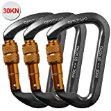 ayamaya 30kn / 3000kg Aluminum Locking Rock Climbing Carabiner D Shape Screwgate Carabiner Hook Screw Lock Carabiner Outdoor Sport Tools for Mom Dad Boyfriend Men Women (Grey- 3 Pack)