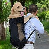 TEQIN Mochila para perros y mascotas, para perros grandes, medianos y pequeños, transpirable, para viajes, senderismo, color negro, L