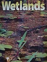 Wetlands, Big Book 1567843824 Book Cover