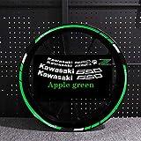 Etiqueta engomada de la Motocicleta para Z650 Motor Reflectante Bike Rum Decal Decoración Impermeable Personalizado Remonte Interior Rayas (Color : Apple Green with z)