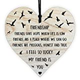 Best Friendship Gift & Plaque for Special Friend, Women, Wife, Him, Her, Mum, with Sayings Message, Ornament and Quote Wooden Hanging Heart Leaving Wall Sign