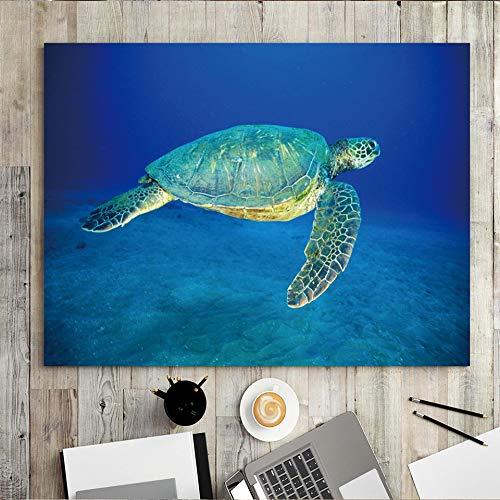 wZUN Decoración para el hogar impresión en Lienzo Imagen Arte de la Pared Pintura Pintura al óleo Pintura Sala de Estar Dormitorio de Tortuga 50x60 Sin Marco
