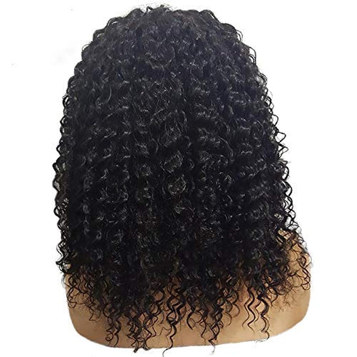 インスタンス高度警戒かつら短い巻き毛のかつらファッション化学繊維かつらフロントレース20インチ