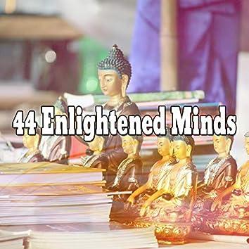 44 Enlightened Minds