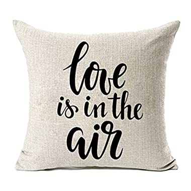 MFGNEH Love is in the Air Cotton Linen Valentine's Day Home Decorative Throw Pillow Case Cushion Cover 18 x 18 Inch