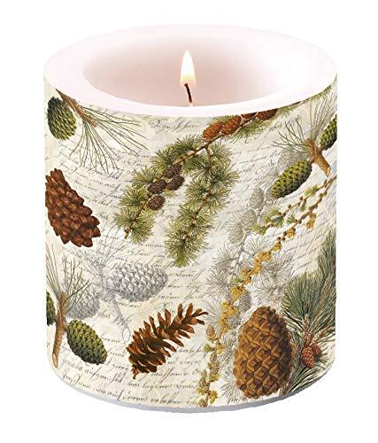 Miss Lovely Edle Stumpen-Kerze/Wind-Licht Herbst-Wald mit Tannen-Zapfen & Zweigen beige braun & grün/herbstliche Tisch-Dekoration