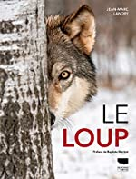 Le loup de Jean-marc Landry